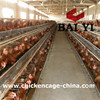 China manufacture california chicken cage for sale