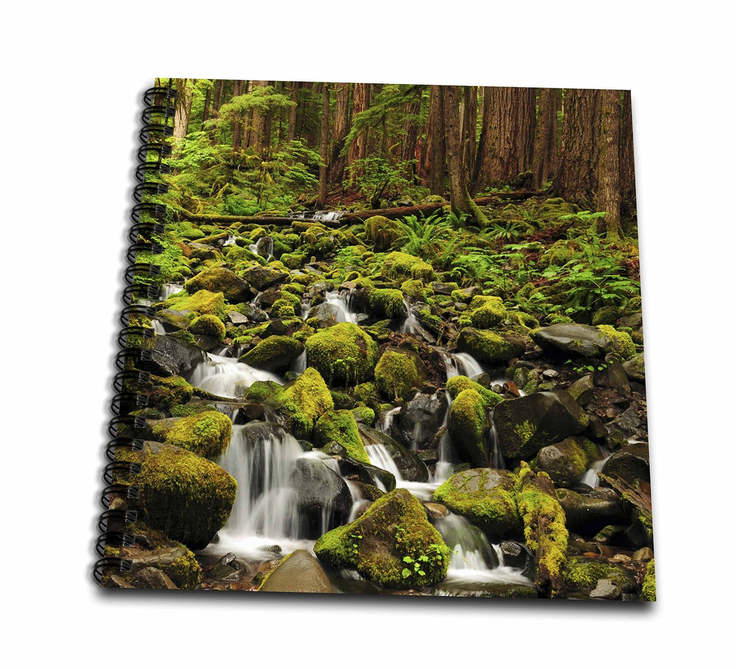 Danita Delimont - Waterfalls - Sol Duc Waterfalls, Washington, USA - US48 MHE0003 - Michel Hersen - Memory Book 12 x 12 inch (db_148348_2)