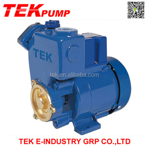 GP Self-priming Peripheral Pump Automatic Water Pump GP250