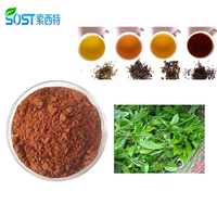 Hot Selling Weight Loss Instant Puer Tea Extract Powder