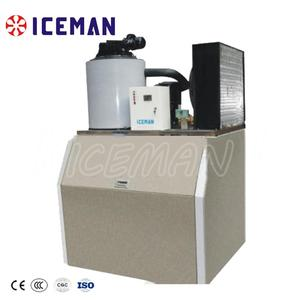 Ice Making Plant Flake Shape Machine 3tons/24hr to Food Protection China Manufacturer