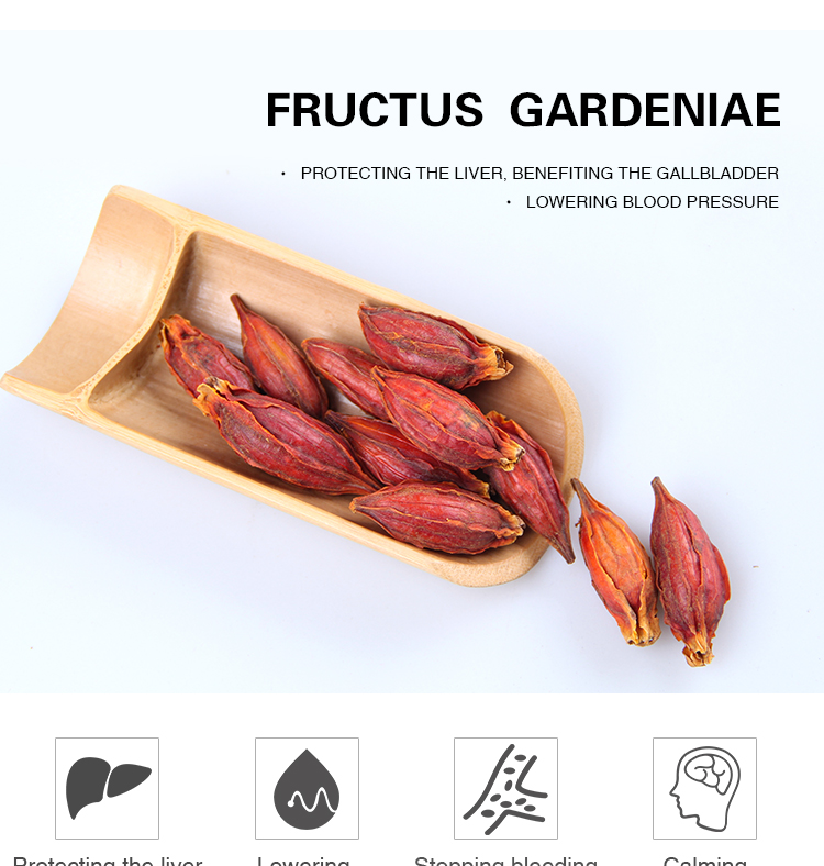 Factory Supply Nature Fructus with Best Price and Fast Delivery