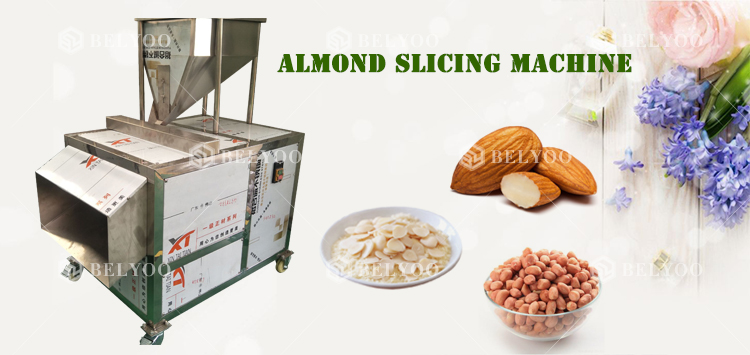 Electric cucumber cutter areca nut peanut macadamia nut slicer almond slicing cashew garlic cutting machine