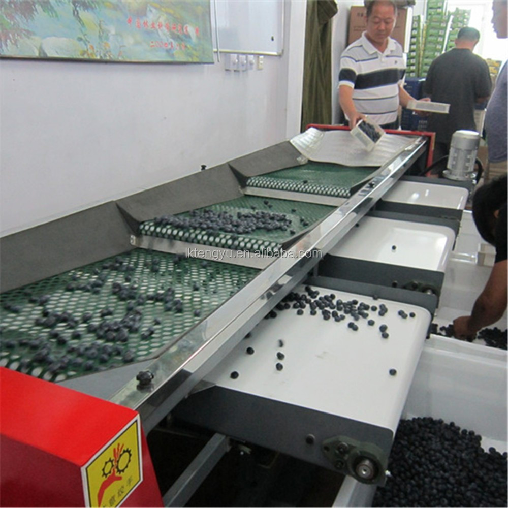 Electronic Coffee Sorting Machine cherry sorting machine suppliers and manufacturers at alibaba com