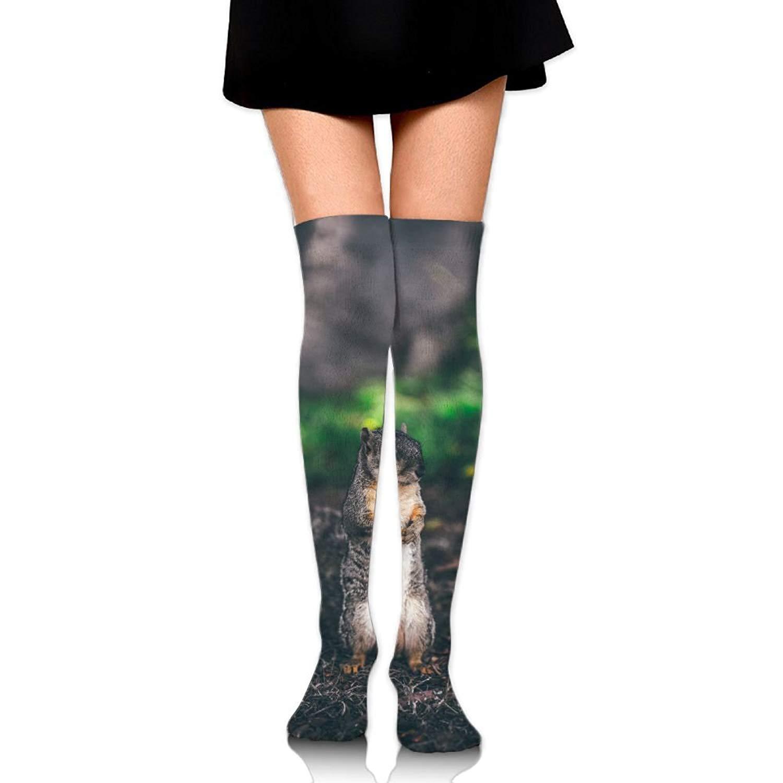 High Elasticity Girl Cotton Knee High Socks Uniform Winter Polar Bears Women Tube Socks