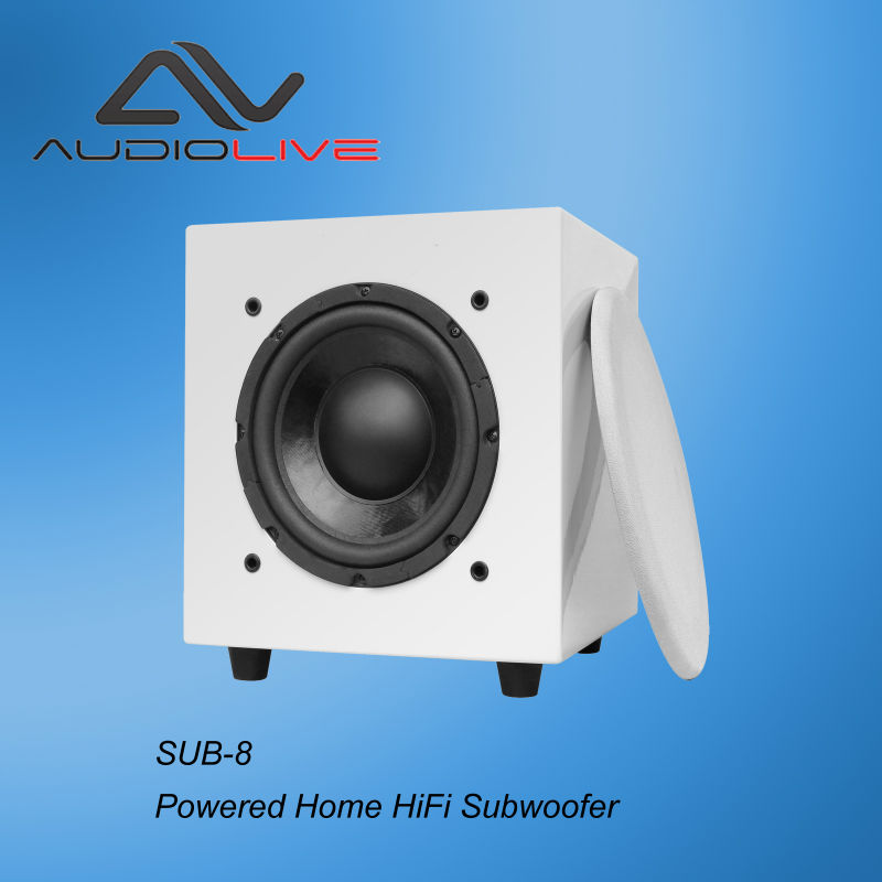 75Watts Standby function outdoor HiFi Subwoofer Speaker M10