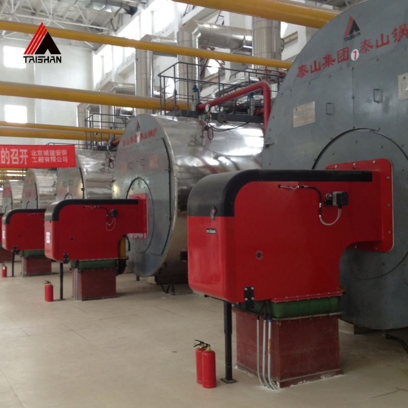 Wns Types Boiler Burners Gas Fired Steam Boiler - Buy 10 Ton Steam ...