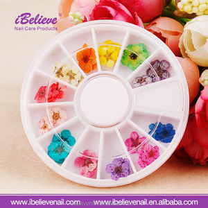 Nail Art Accessories/Dry Flower nail stickers 3D Decoration