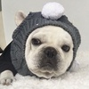 New 2019 Hot Selling Pet Hat Fashion Personality Winter Warm Dog Hat