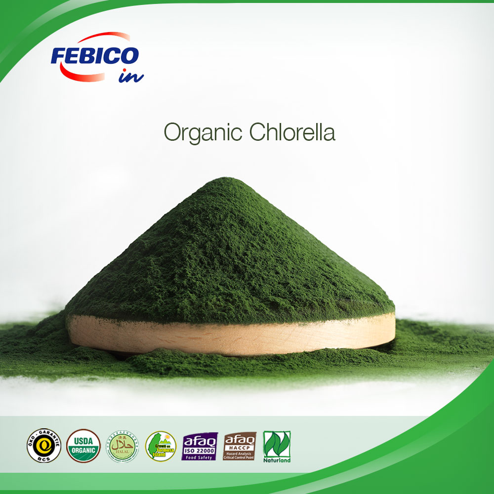 Bulk Raw Materials Organic & Premium Chlorella Power and Tablets Made in Taiwan