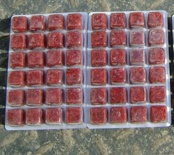 how to make frozen bloodworms