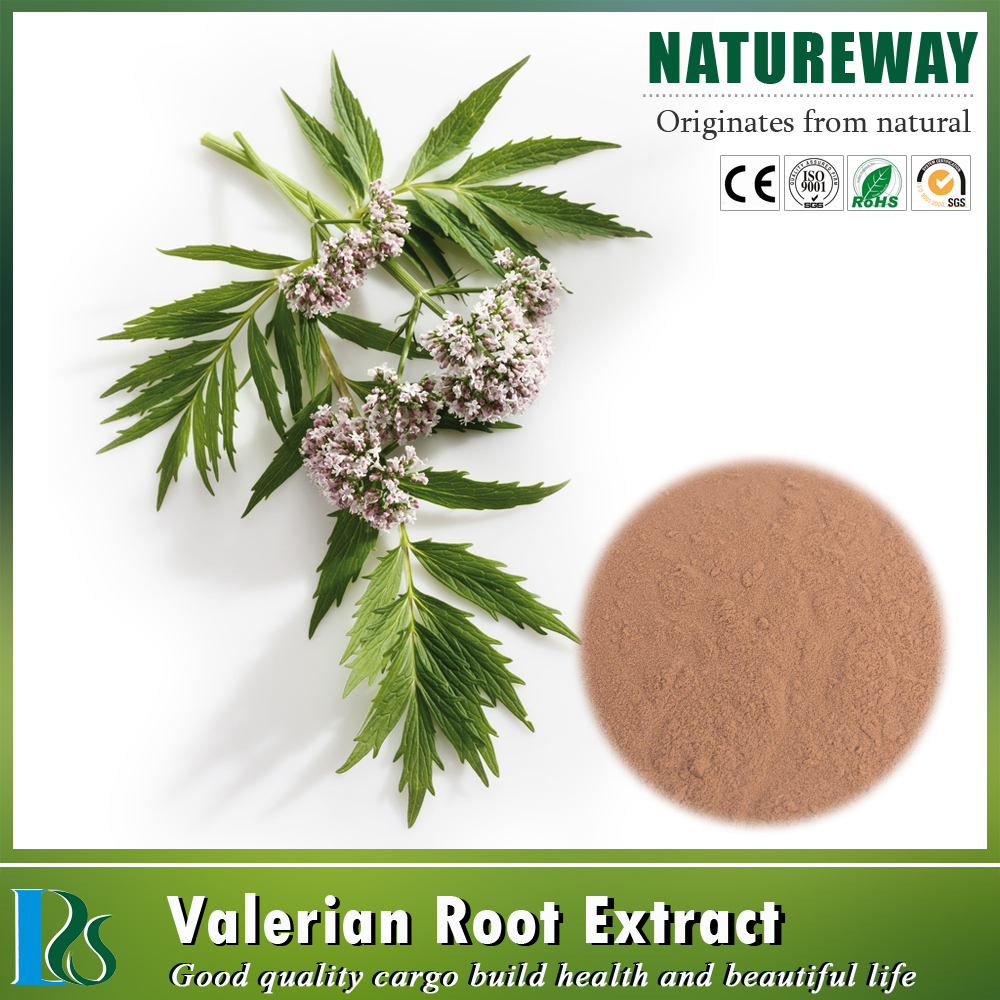 One touch express manufacturer Valerian extract valeric acid CAS NO.: 8057-49-6