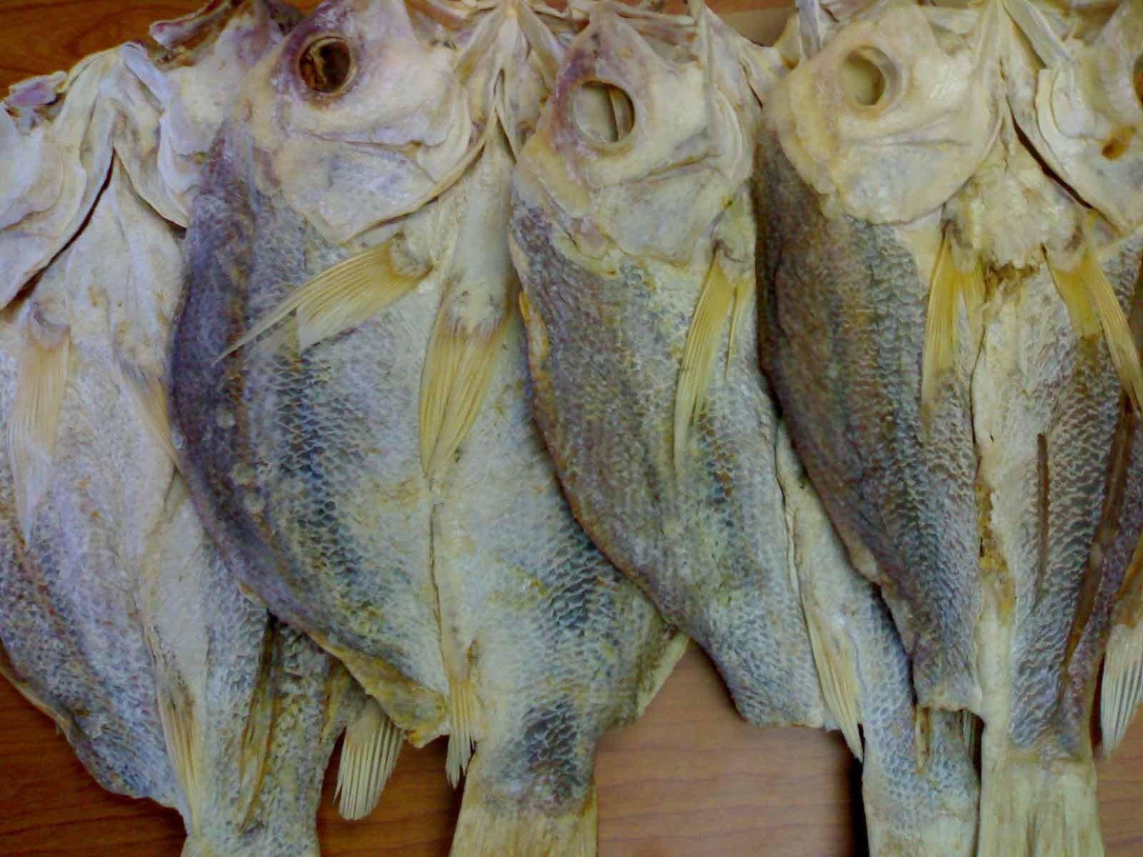Ikan Kering Merah Kakap Kerapu Kuro Tuna Mata Besar Dll Buy Ikan Kering Product On Alibaba