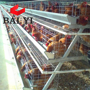 Uganda Automatic Layer Chicken Cages Poultry Farm Equipment For Sale