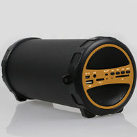 S11 Portable Bluetooth Indoor/Outdoor 2.1 Hi-Fi Cylinder Loud Speaker with SD Card, USB, AUX and FM Inputs, 3