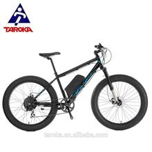 commercial outdoor indoor giant spinning electric fat bike by Taiwan supplier
