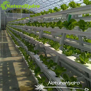 Hydroponics NFT Channel Plant Grow System