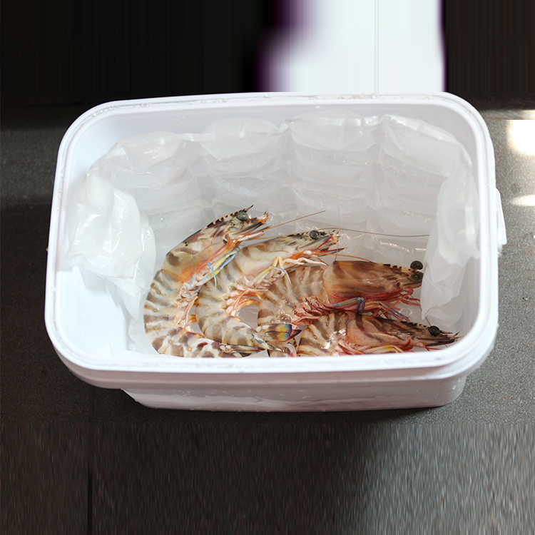 Hot Selling Cheap Custom Freezer Food Ice Pack Disposable Instant Deep Freeze Bag Icepack