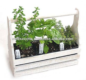 Wooden Herb Planter Herb Garden Tool Box Oval Seed Planters With