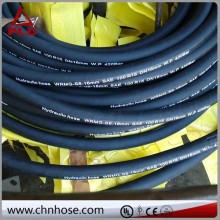 Bottom price branded high power hose