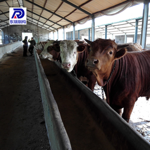Prefabricated Horse Barns Design Steel Structure Cow/Horse Barns/Farm Buildings