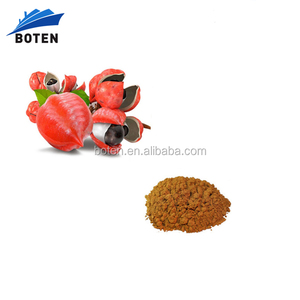Manufacturer sales guarana soft drink with Guarana Extract powder