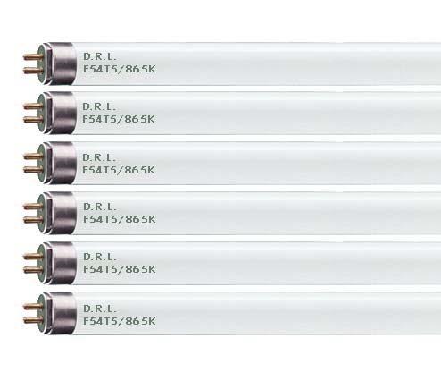 FP21//865//ECO 21 Watt T5 Fluorescent Tube Light Bulb 21W Daylight 6500K F21T5 Replaces F21W//T5//865 FL21//T5//865 F21T5//865//ALTO Sylvania 20989 2 Pack