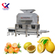 Henan Lingxian Orange Juice Extractor Machine At The Best Price