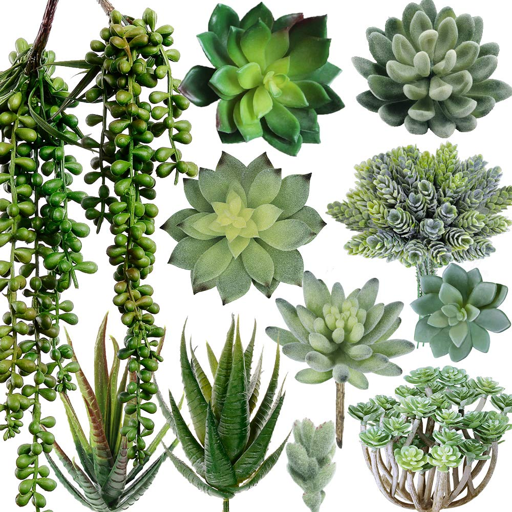 12 Pcs Artificiale Faux Mini Piante Succulente