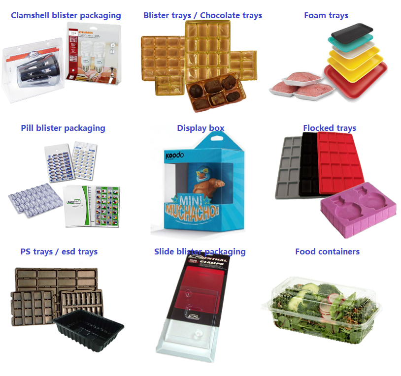 Free Sample Wholesale Blisters for Plastic clear Quail/chicken egg packaging tray