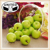 Artificial Green Washington Apple Large - Plastic Decorative Fruit Apples Fake