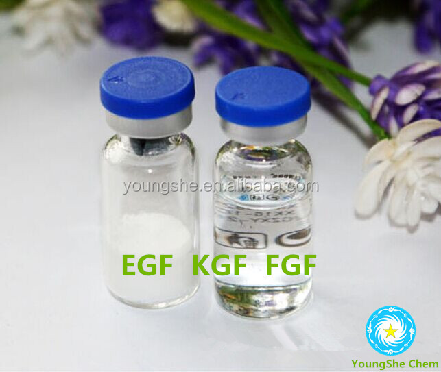 human epidermal growth factor (rhEGF)