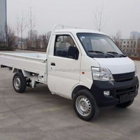 LHD/RHD 17KW Electric mini truck/ pickup with eec