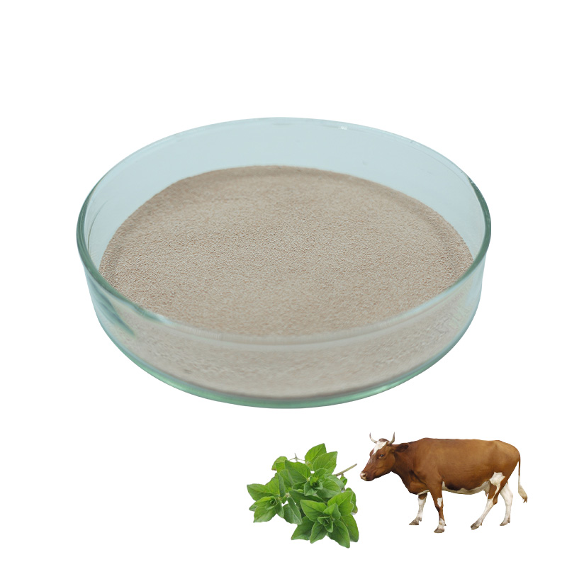 Corn meal for animal feed oregano oil premix