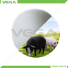2013 Hot selling Chemical Pharamceutical Free Sample MOQ 1kg Veterinary Medical China Manufactuer Vitamin C Coated