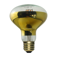 Screw 30W R39 Edison Bulb Light Bulb E14 Clear Reflector Spot Light Bulbs Lava Lamp Incandescent Filament Lamp Lighting 220V
