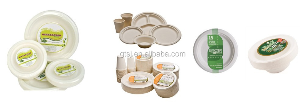 Eco Friendly Microwavable Disposable Paper Plate
