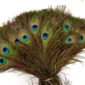 hot sale top quality 25-130cm real natural peacock tail feather for sale