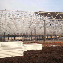 Prefabricated light steel frame structure workshop/plant/warehouse