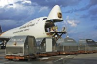 Professional freight forwarder ups/dhl/fedex/tnt expressfrom China t o Los Angeles