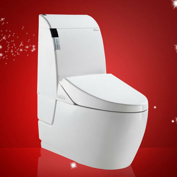 Combination bidet one piece toilet japan style women toilet bidet buy japan style women toilet - Japanese toilet bidet combination ...