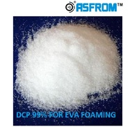 White Crystal Dicumyl Peroxide Cross-linking DCP Foaming Agent