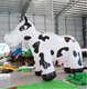 Custom giant cute inflatable milk cow animal model for outdoor events