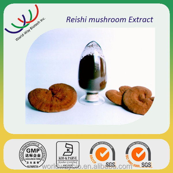 High quality supplement herbs pure 2.5% polysaccharides reishi mushroom spores