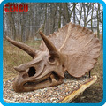 Dinosaur Theme Park Artificial Dinosaur Fossil Head For Sale
