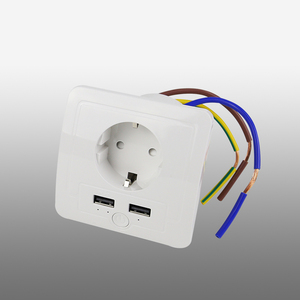 Best Price Smart Power Socket With USB Port AC 15a 2USB Wall Outlet