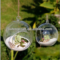 glass ball hanging terraiums/ vases