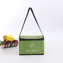 china polyester cans thermal frozen food lunch insulated cooler bag
