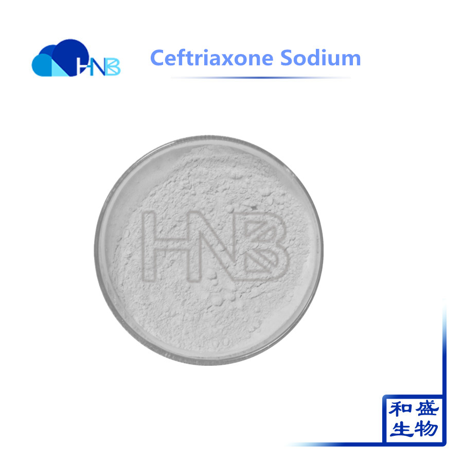 Best Quality Ceftriaxone Sodium injection price CAS 73384-59-5