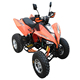 ATV 250cc 4x4 mini atv quad bike atv with EEC